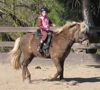 Kids and Icelandics